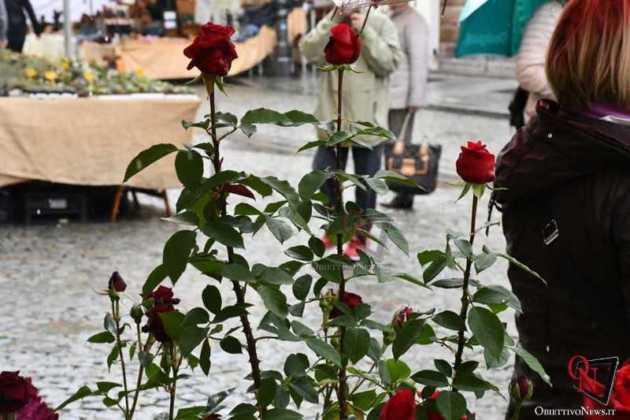 Venaria Festa delle Rose 2019 Sabato 2