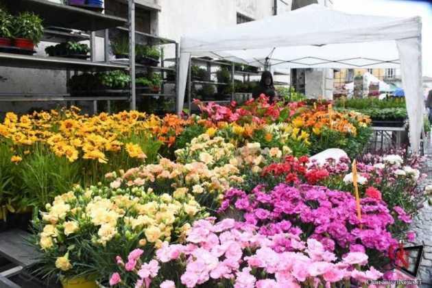 Venaria Festa delle Rose 2019 Sabato 4