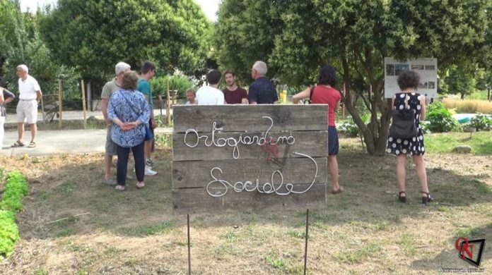 Castellamonte Ortogiardino sociale 9