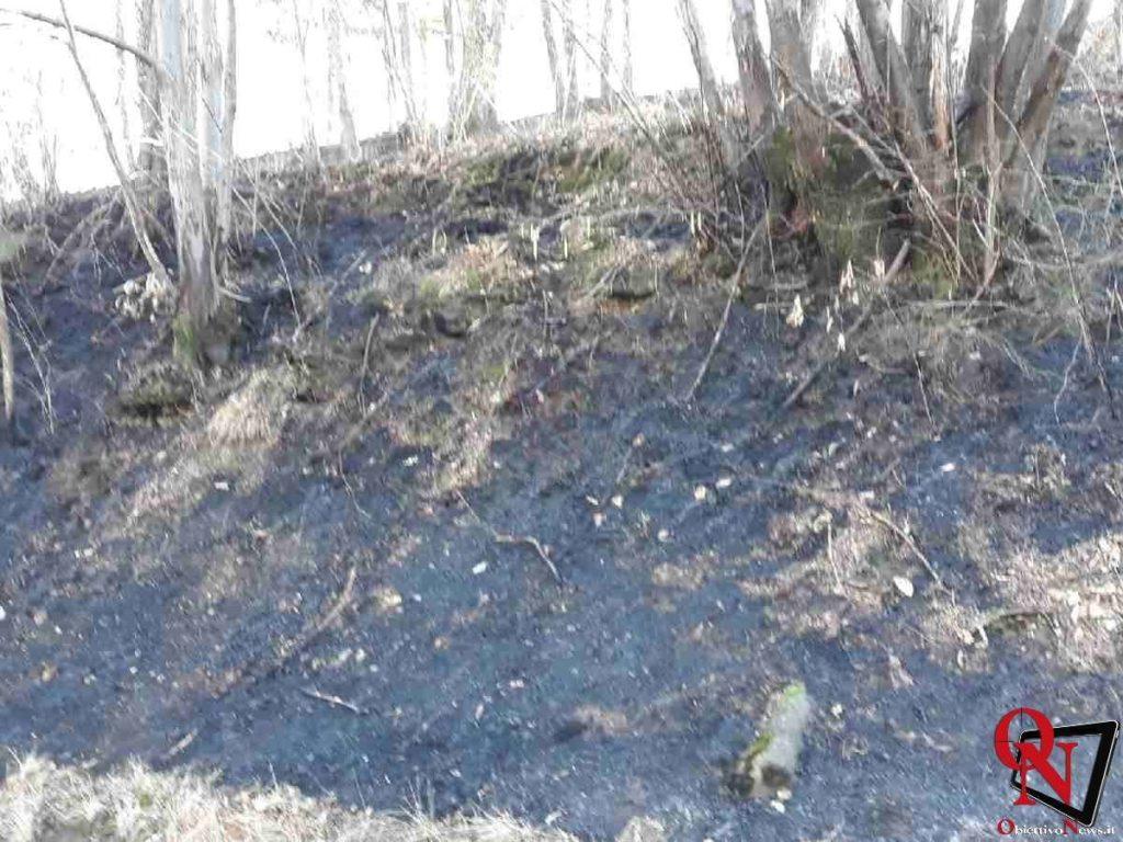 alice superiore incendio boschivo 1 Res