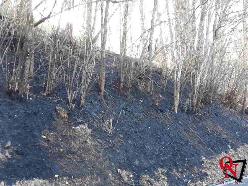 alice superiore incendio boschivo Res