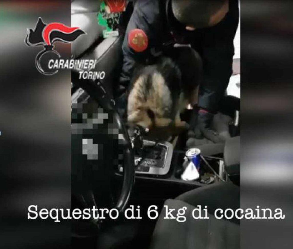 torino traffico droga