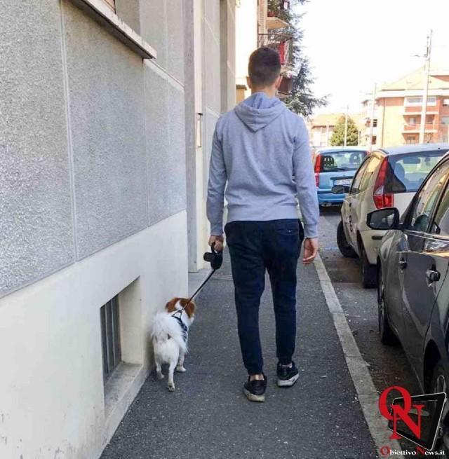 venaria cani a passeggio 1 Res