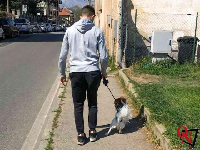 venaria cani a passeggio Res