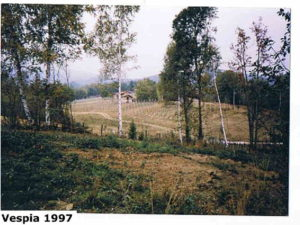 vespia 1997