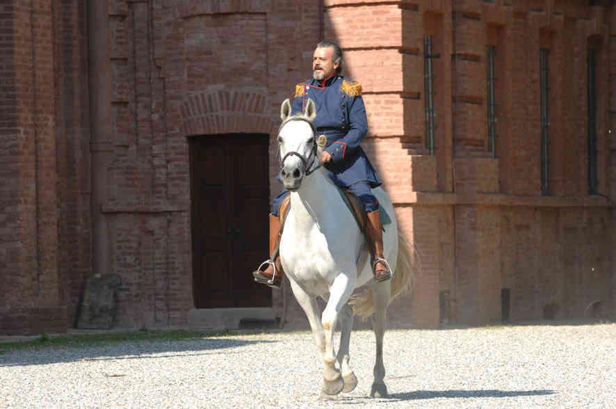 1860 Re e Rosina cavallo Res