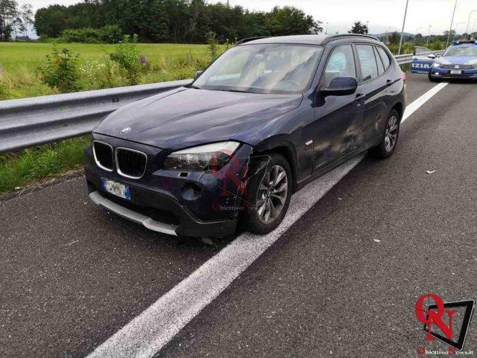 Cinghiale sull'autostrada in Canavese, ferito un automobilista